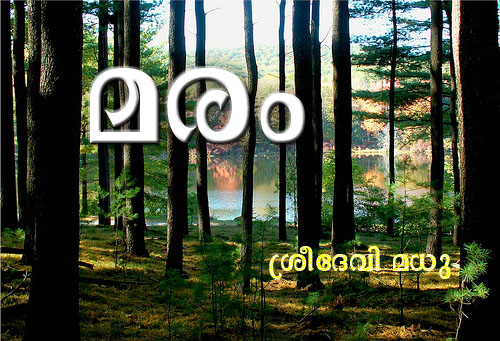Lipikaar Malayalam Typing Software for Windows